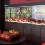 Aquarium Hotel Asahi